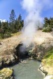Cozinhando o geysir em Yellowstone Imagens de Stock
