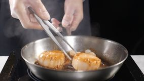 Cozinhando o marisco Conceito saudável do alimento Cozinheiro chefe profissional nas luvas que cozinha as vieiras que gerenciem a filme