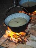Cozinhando peixes Fotografia de Stock Royalty Free