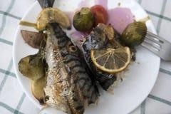 Cozinhando peixes da cavala Foto de Stock Royalty Free