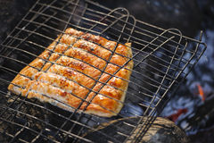 Cozinhando salmões sobre o fogo do acampamento fotos de stock