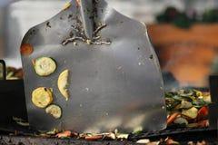 Cozinhando Zuccini fotografia de stock royalty free