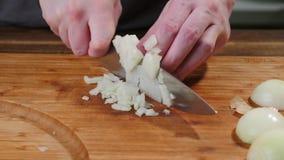 Cozinhe cebolas das fatias em uma placa de corte Corte, natural fotografia de stock