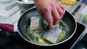 Cozinhe a preparação de uma faixa de peixes em uma frigideira com as especiarias na manteiga derretida video estoque