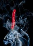 Pimenta de pimentões vermelhos quente imagens de stock