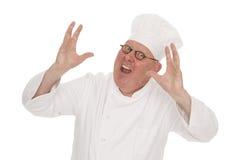 Cozinheiro Imagem de Stock