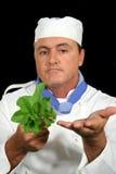 Cozinheiro chefe 2 da erva Fotografia de Stock Royalty Free