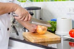 Cozinheiro chefe Chopping Onion foto de stock