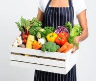 Cozinheiro chefe com produto orgânico local fresco Imagens de Stock Royalty Free
