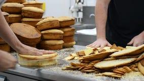 Cozinheiro chefe de pastelaria que corta o bolo de esponja em camadas Processo de produção do bolo video estoque