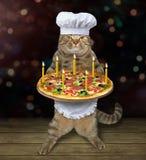 Cozinheiro chefe do gato com pizza 2 do feriado imagem de stock