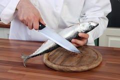 Cozinheiro chefe e peixes Fotos de Stock Royalty Free