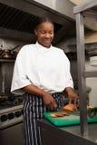 Cozinheiro chefe fêmea que prepara vegetais foto de stock