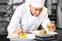 Cozinheiro chefe masculino concentrado que decora o alimento na cozinha imagem de stock royalty free