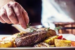 Cozinheiro chefe na cozinha do hotel ou do restaurante que cozinha somente as mãos Bife preparado com decoração vegetal foto de stock