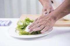Cozinheiro chefe que corta a cebola Fotografia de Stock