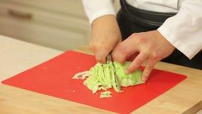 Cozinheiro chefe que corta a couve verde filme