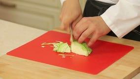 Cozinheiro chefe que corta a couve verde video estoque