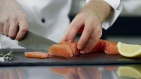 Cozinheiro chefe que corta a faixa dos salmões na cozinha Mãos do close up que cortam peixes frescos vídeos de arquivo