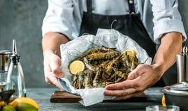 Cozinheiro chefe que cozinha com o camarão do tigre no fundo escuro imagens de stock royalty free