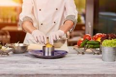 Cozinheiro chefe que cozinha na cozinha profissional foto de stock royalty free
