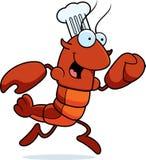 Cozinheiro chefe Running dos lagostins Imagem de Stock Royalty Free