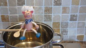 Cozinheiro chefe superior Imagens de Stock Royalty Free