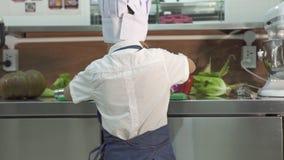 Cozinheiro do cozinheiro chefe do rapaz pequeno no chap?u do avental e do cozinheiro chefe que cozinha o alimento na cozinha do r filme
