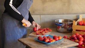 Cozinheiro fêmea novo em tomates vermelhos de esqueleto dos cortes do traje e do avental para fazer o molho de tomate vídeos de arquivo