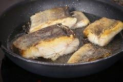Cozinheiro Fish Imagem de Stock