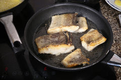 Cozinheiro Fish Fotos de Stock Royalty Free