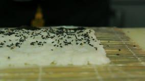 Cozinheiro que adiciona o sésamo aos rolos de sushi vídeos de arquivo