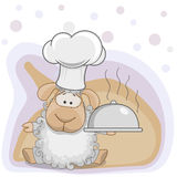 Cozinheiro Sheep Imagem de Stock