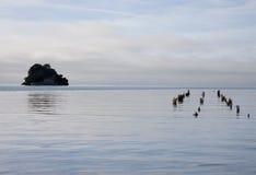 Cozinheiro Strait Collingwood New Zealand foto de stock royalty free