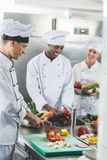 cozinheiros chefe multiculturais felizes que preparam vegetais foto de stock royalty free