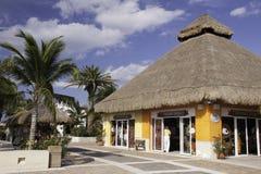cozumel巡航墨西哥端口界面 免版税库存照片