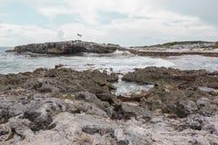 Cozumel costiero Fotografie Stock