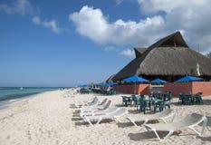 Cozumel-Insel-Strand Lizenzfreie Stockfotografie