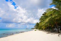 Cozumel island beach Riviera Maya Mexico. Cozumel island beach in Riviera Maya of Mayan Mexico Royalty Free Stock Photos