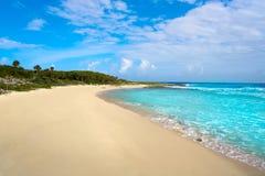 Cozumel island Bush beach in Riviera Maya. Of Mayan Mexico royalty free stock photos