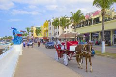Cozumel, Mexico, Caribbean. Central street in Cozumel, Mexico, Caribbean Royalty Free Stock Image