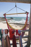 Cozumel plaża, Meksyk Zdjęcia Royalty Free