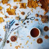 Cozy autumn morning with cup of tea, decorative lavender, dried oranges and autumn leaves on light blue background, teatime, hugge. Cozy autumn morning with cup royalty free stock images