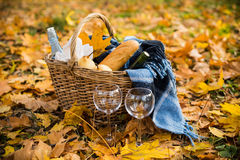 Cozy autumn picnic. Basket with a blanket, coffee, food, wine and glasses on yellow autumn leaves. A cozy autumn picnic in the park, a warm autumn day Royalty Free Stock Image