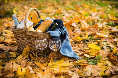 Cozy autumn picnic. Basket with a blanket, coffee, food, wine and glasses on yellow autumn leaves. A cozy autumn picnic in the park, a warm autumn day Royalty Free Stock Images