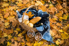 Cozy autumn picnic. Basket with a blanket, coffee, food, wine and glasses on yellow autumn leaves. A cozy autumn picnic in the park, a warm autumn day Stock Photography