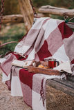 Cozy autumn picnic with tea and cookies Royalty Free Stock Photos