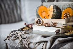 Cozy autumn still life. Details in the living room. Autumn composition with Cup and pumpkins , the concept of leisure and autumn weekends royalty free stock images