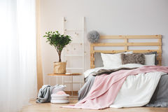 Cozy bedroom design. Cozy creative bedroom design with plant ad grey and pink accessories stock photo