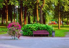 A cozy bench near the flower-bed in a beautiful park place. A cozy bench near a flowerbed in a beautiful area of the Park stock image